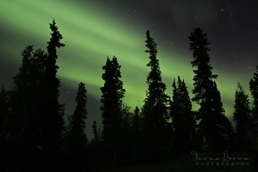 Aurora Borealis in Yellowknife