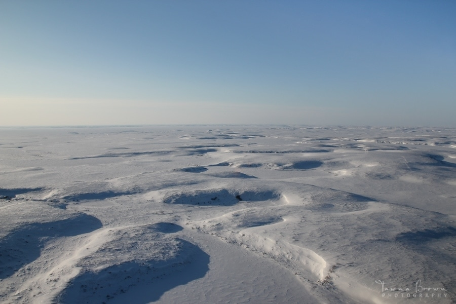 Aerial view of Arctic Tundra in Winter