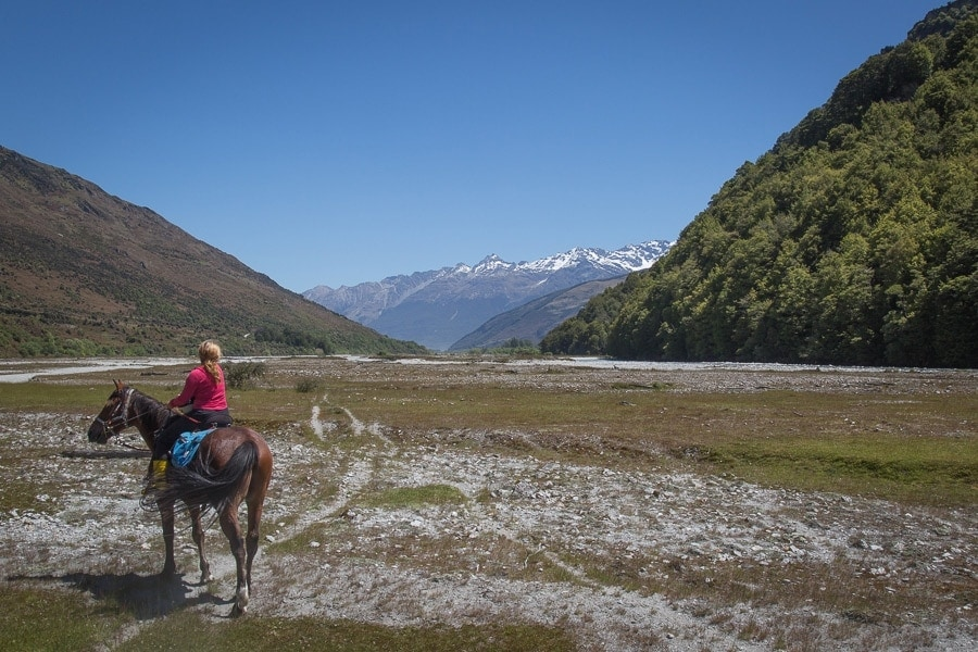 Horse riding in New Zealand