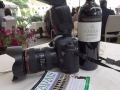 Camera, Wine and Italian Phrasebook