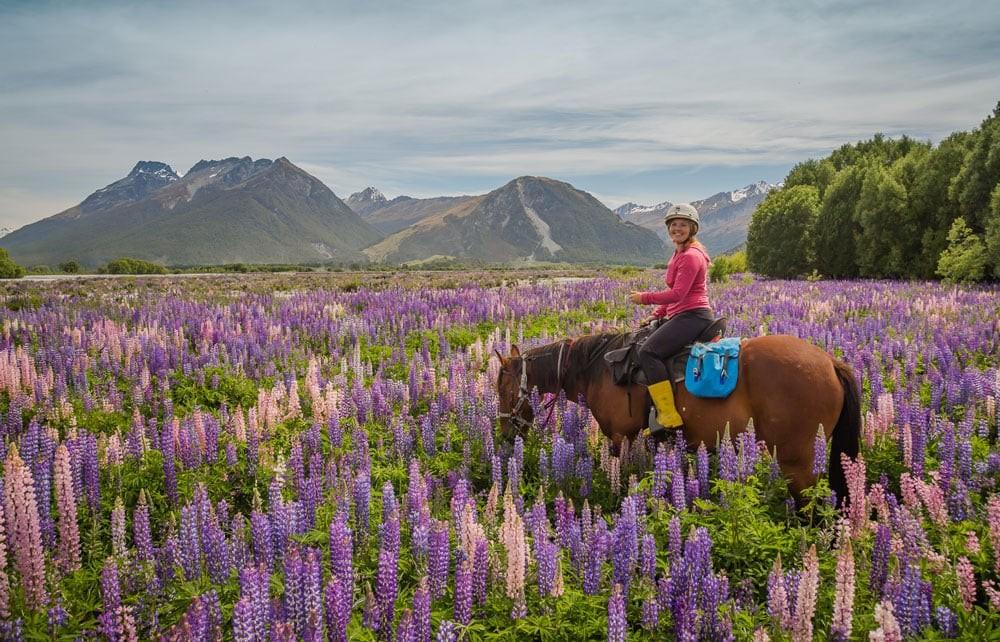 Horse Trekking in New Zealand