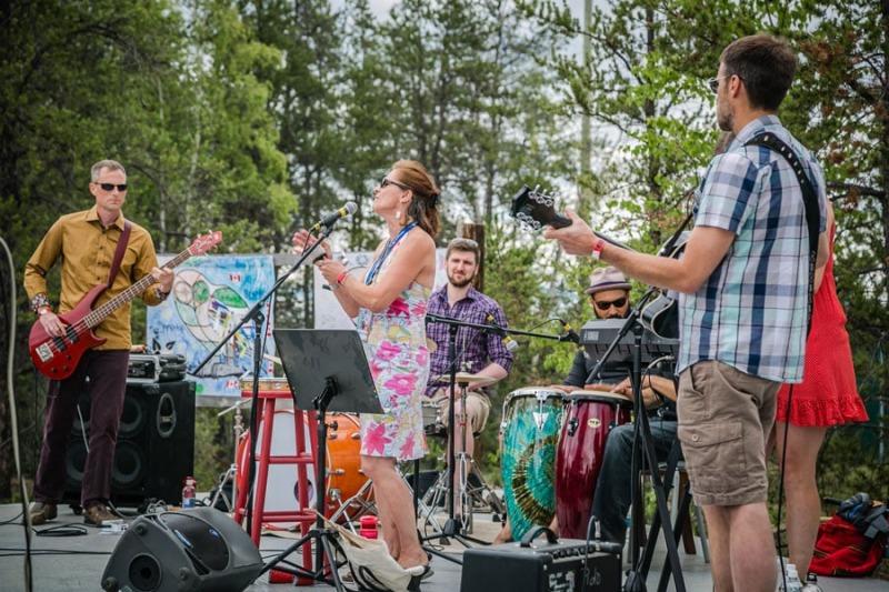 Musicians at Folk on the Rocks