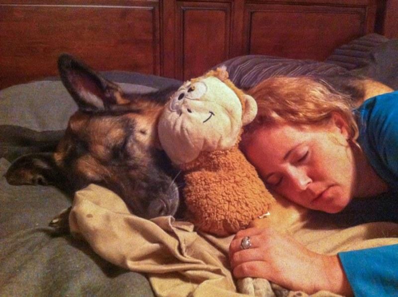 Tawna and Tika sleeping